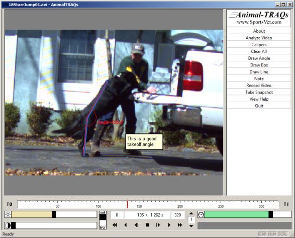 Animal-TRAQs Screen Shot of dog jumping